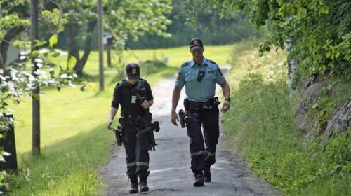 væpnet politi